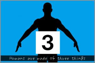 人間は3つのものでできています